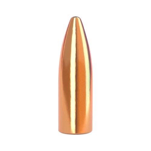 300 AAC 150gr (.308) Blackout Spire Point